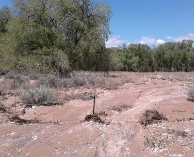 E282 Pojoaque basin